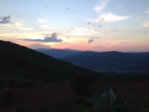 Bayr-Wald